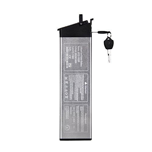 eBike_RICHBIT Ebike Batterie 48V 8AH für RICHBIT RLH-730 Ersatzbatterie