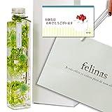 フェリナス ハーバリウム 【誕生日カート&手提袋付 グリーンゴールド】b-card-green-fukuro