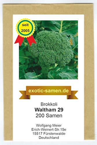 Broccoli - Brokkoli - winterhart - Frühernte - Waltham 29-200 Samen