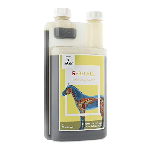 R RESULT EQUINE R-B CELL