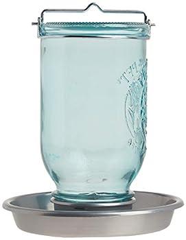 Perky-Pet Abreuvoir à oiseaux Bocal - Décoration en verre à suspendre dans le jardin - Facile à remplir - Capacité max. 1L d'eau #783