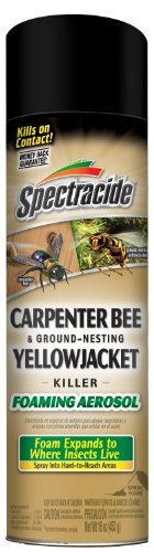 Spectracide HG-53371 Carpenter Bee & Ground-Nesting Yellowjacket Killer Foaming Aerosol, Case Pack of 12