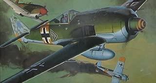 Hasegawa Focke-Wulf Fw 190 1:32 Scale Military Model Kit