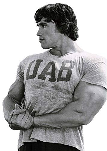 BEBAK Maglietta da uomo da palestra   Bodybuilding T Shirt da palestra per uomo Arnold Schwarzenegger UAB Gym Wear Training Top Grigio, sportivo. L