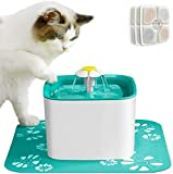 Cat Water Fountains Review and Comparison