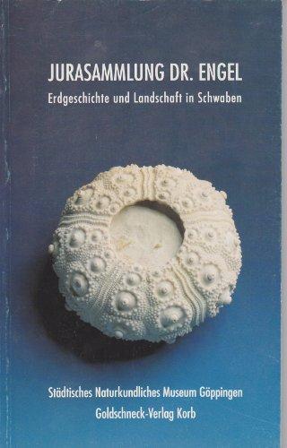 Jurasammlung Dr. Engel. Erdgeschichte und Landschaft in Schwaben. Ein Museums- und Naturführer