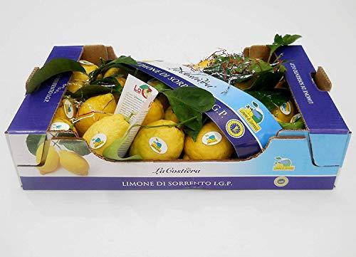 Limone di Sorrento IGP con foglia CAT 1° Cal.3 in cartone da 10 Kg