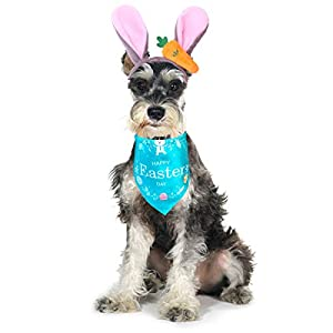 CooShou Dog Easter Bunny Ears Headband with Carrot Pet Rabbit Ears Headwear Dog Easter Bandana Triangle Bib Scarf Easter Rabbit Costume for Dogs Cats 2Pack (Blue)