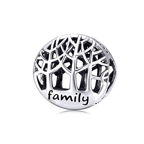 Charm in argento sterling 925, motivo: famiglia di 4 persone, da donna, adatto per braccialetti e collane Pandora Stile 2