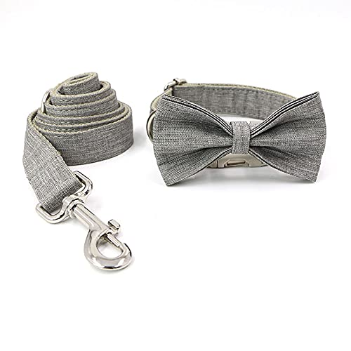 Etiqueta de Nombre Collar de Perro Collares para MascotasPerrito Grande Grabe el número de teléfono-Dog_Collar_Set_7_XL