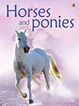 Best the usborne book of horses and ponies Reviews