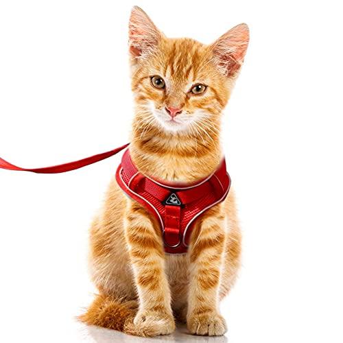 FEimaX Arnes para Gato Antiescape Ajustable Arnés Gatos con Correa Nylon, Chaleco de Malla Suave con Tira Reflectante Chaqueta de Caminar para Perros Gatos Pequeños (S, Rojo)