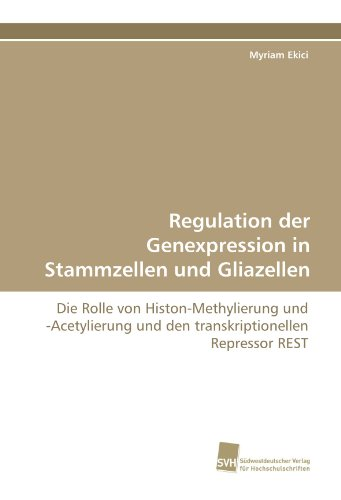 Regulation der Genexpression in Stammzellen und Gliazellen: Die Rolle von Histon-Methylierung und -Acetylierung und den transkriptionellen Repressor REST