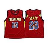 QPY Lebron James Cleveland Cavaliers # 23 Camiseta de baloncesto para hombre, camiseta sin mangas Swingman unisex (S-XXL)