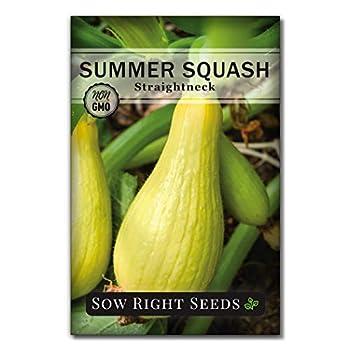 Best long neck squash Reviews