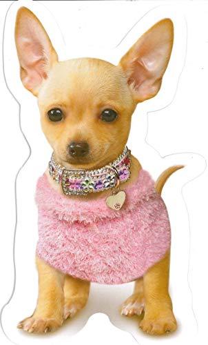 Little Dog In Handbag Birthday Sound Card
