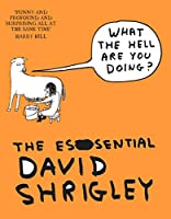 What the Hell Are You Doing?: The Essential David Shrigley