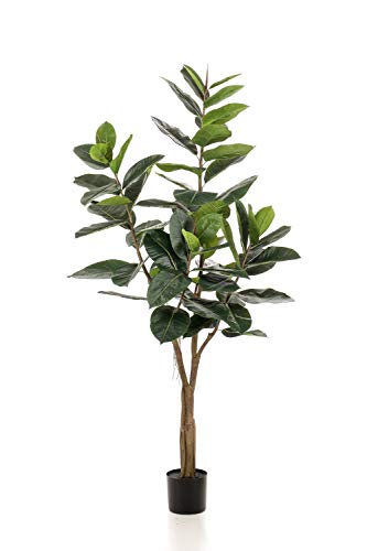 artplants.de Árbol Decorativo de ficus Elastica Feria, Tronco Artificial, Verde, 180cm - Ficus de plástico - Árbol Artificial
