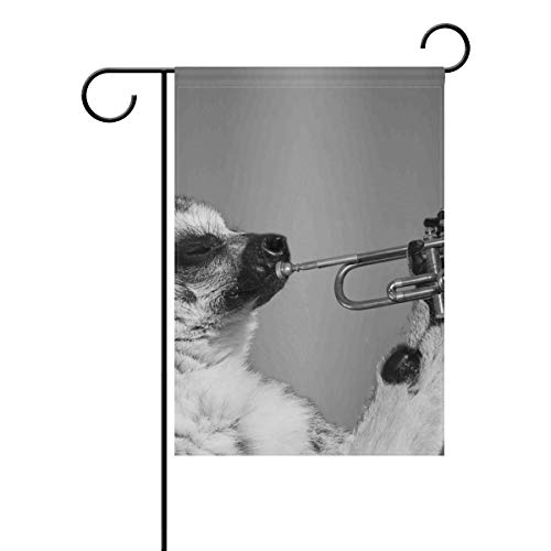 JIRT Jardin Drapeau 30,5 x 45,7 cm (30,5 x 45,7 cm) Animal Mignon Raton Laveur Play Sax Polyester Banner Double Face pour intérieur ou extérieur pelouse Cour Décoration, Image 207, 12x18(in)