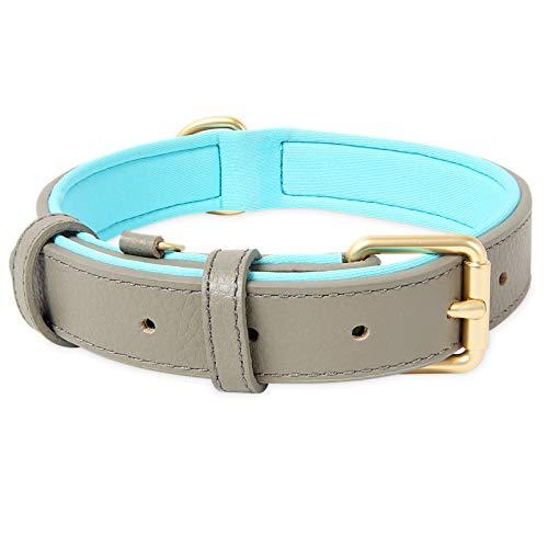 HEELE Hundehalsband, Hundehalsband mit gepolstert und echtes Leder, Verstellbar, Halsband für Welpen Mittlere Kleine Hunde, Grau, M