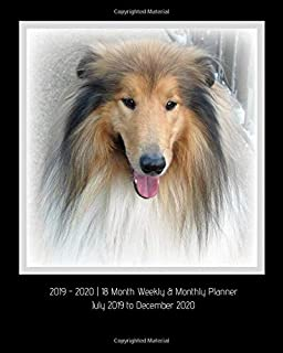 2019 - 2020 | 18 Month Weekly & Monthly Planner July 2019 to December 2020: Rough Collie Dog Breed Vol. 1 Calendar in Review/Monthly Calendar with ... Holidays–Notes 8 x 10-