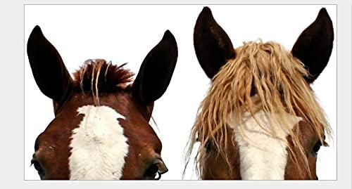 MDGCYDR Pegatinas Coche Ventana De Coche De 40 Cm, Pegatina De Cristal De Doble Cara para Coche, Material para Mascotas De Inyección De Tinta UV, Burro Divertido, Caballo