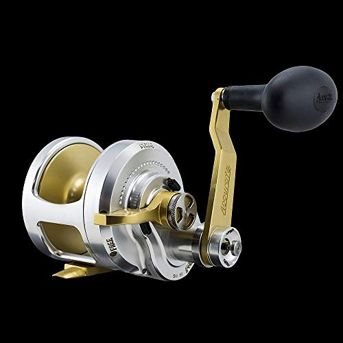 Top 10 Best Accurate 2 Speed Fishing Reel Comparison