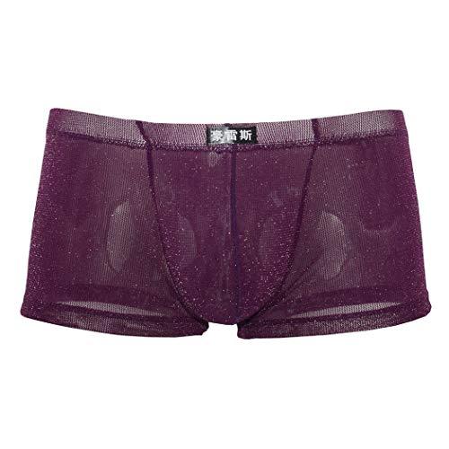 Wiftly Boxershorts Herren Low Rise Sex Transparent Netz Pants Autmungsaktiv Unterhosen Männer Unterwäsche Brief (Lila, 2XL)
