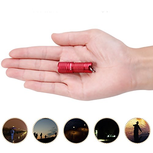 Mini Flashlight Keychain with Micro USB Tiny Flashlight Brightness can Achieve up to 200 lumens for EDC Torch (Red)