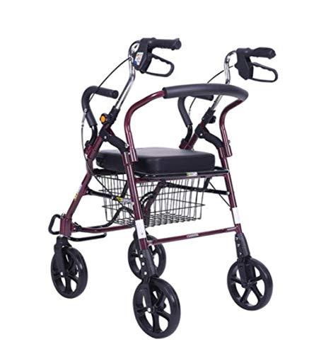 Ancianos con silla de ruedas Walker,...