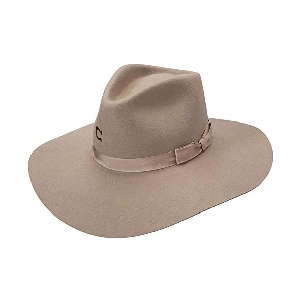 Charlie 1 Horse Women's Highway Springtime Felt Hat – Cwhway-4036-Mu