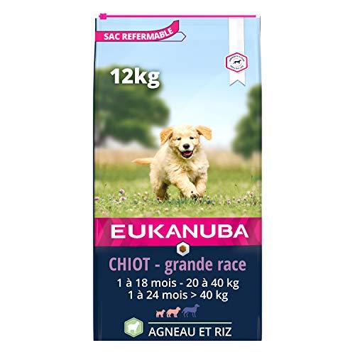 Eukanuba - Croquettes Riches en Agneau et Riz pour Chiots Grande Race - Digestion sensible - DHA et Calcium - Favorise la Croissance - Sans OGM, conservateur, arômes artificiels - 12kg
