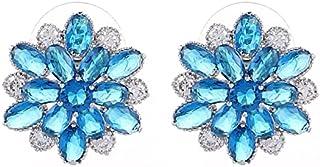 Platinum Plated Earring For Women (dar5521)