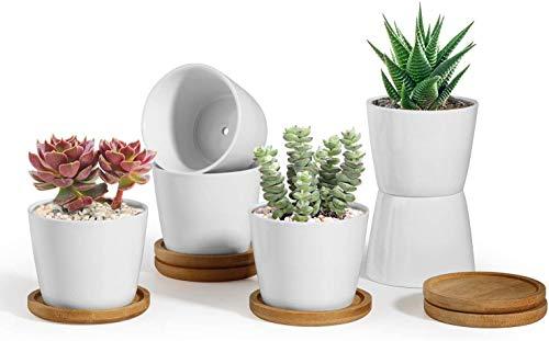 T4U 8cm Keramik Sukkulenten Kaktus Töpfe mit Untersetzer Rund 6er-Set, Klein Blumentopf Weiß für Moos Mini Zimmerpflanzen