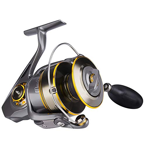 Saltwater Fishing Reel Spinning for Inshore Saltwater Surf Long Casting | Offshore Deep Sea Boat Heavy-duty Jigging or Freshwater Kayak Bass Fishing Gear pair with an Ultralite Fishing Rod Combo 6000