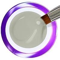 BC Bernal Cosmetics Gel Painting Nº 35 - Grey - 5ml - 1 Unidad