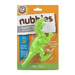 2. Arm & Hammer Ora-Play Denta-Saurus T-Rex Dental Chew Toy