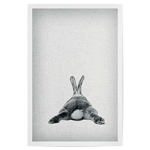 artboxONE Poster 30x20 cm Für Kinder Rabbit 20