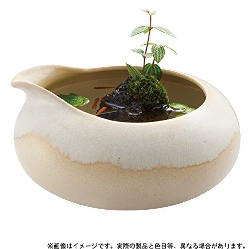 和の鴨口陶器鉢