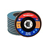 WORKPRO 10 PC Discos Abrasivo Disco de Láminas Disco para Amoladoras Angulares ø 115 mm ...