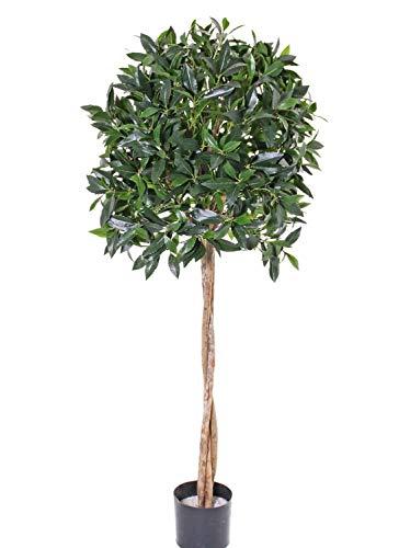 PARC Network - Kunstbaum Lorbeer Kugel, Echtstamm, Früchte, 150 cm, Ø 50cm - künstlicher lorbeerbaum - Plastik lorbeer Kugel - Kunst kirschlorbeer