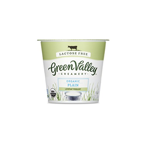 Green Valley Creamery Plain Lactose Free Low Fat Yogurt, 6 oz