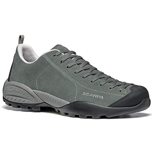Scarpa Mojito GTX, Zapatillas de Trail Running Unisex Adulto, Agave Green-Agave Gore-Tex BM Spider Trek, 46 EU