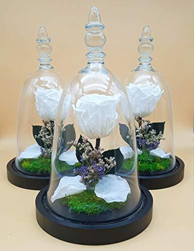 Rosa eterna Blanca. Cúpula Cristal. Altura 30 cm. Rosa eterna preservada Blanca....