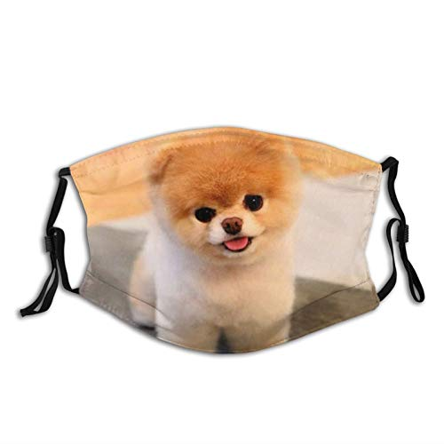 Cute Bread Pomeranian Dog Sticking Out Tongue Face Mask With Filter Pocket Washable Reusable Face Bandanas Balaclava With 2 Pcs Filters