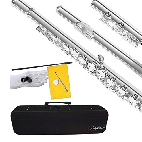 Closed Hole C Flute Nickel Silver Plated Student Beginners Flute with Case, Tuning Rod and Screwdriver Cleaning Cloth,Joint Grease and Gloves