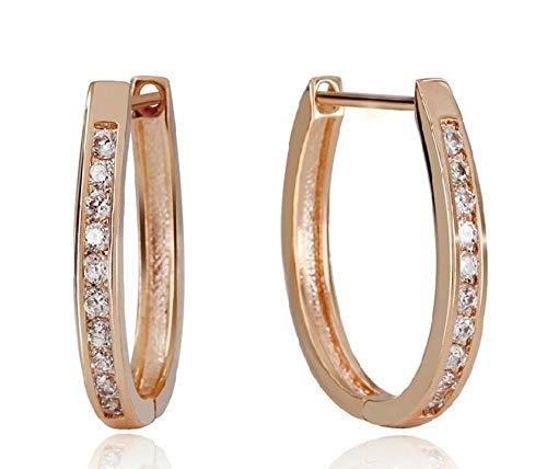 Ohrringe Gold 925 Sterling Silber Ohrring Sekt Einreihig Zirkon Großer Runder Kreis Ohrstecker Für Frauen Brincos Oorbellen Pendientes
