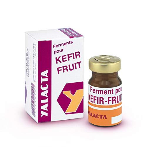 Yalacta Ferment pour Kéfir de Fruits