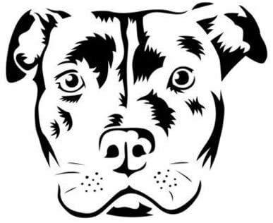 CZJMCT-DQ Bull Terrier Dog - Adhesivo decorativo para ventana de coche, diseño de caricatura creativa, 12,5 x 10,3 cm, 2 unidades, color blanco, 12,5 x 10,3 cm, CZJMCT-DQ