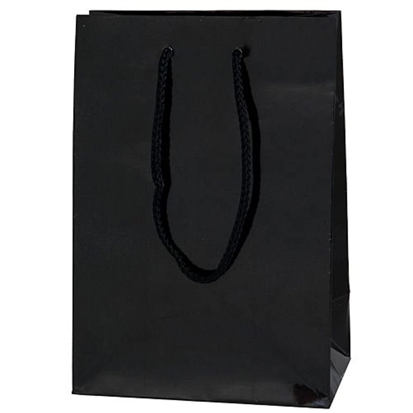 amscan Party Friendly Mini Glossy Gift Bag, Black, 7 3/4